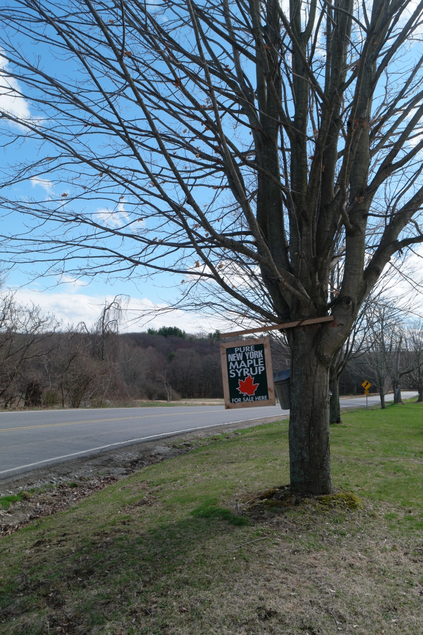 Maple Weekend, Dutchess County, NY